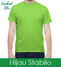 hijau-stabilo-24s